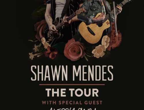 Celebration Foundation Raffling Off Two Tickets to  Shawn Mendes and Alessia Cara to Benefit WINGS Program